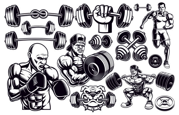 illustrazioni stock, clip art, cartoni animati e icone di tendenza di set of black and white design elements for gym. - box name