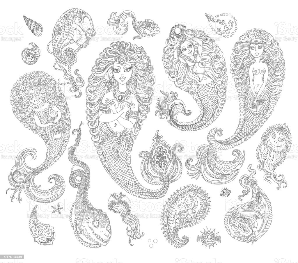 Set Of Black And White Hand Drawn Mermaids Sea Animals Fishes Seaweed