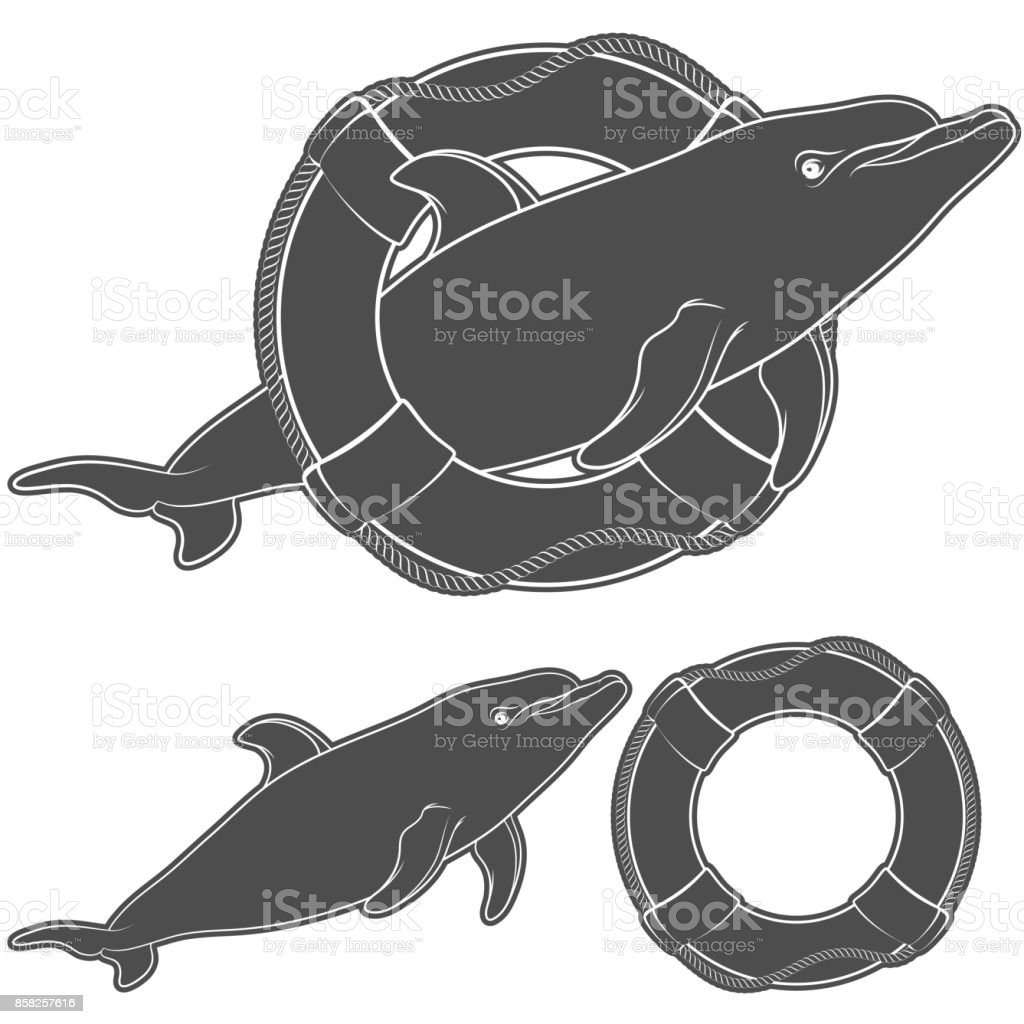 Set of black and white illustrations with a dolphin and a life buoy. Isolated objects. vector art illustration
