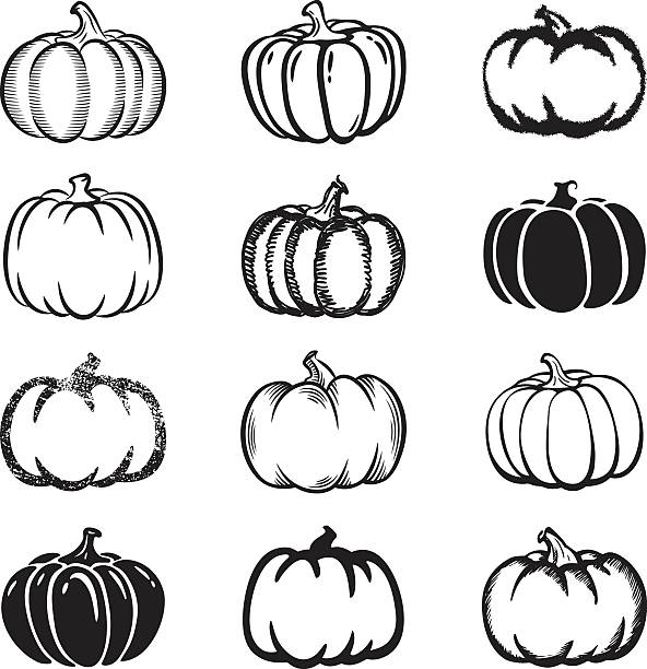 Set of black and white pumpkin icons on white background Pumpkins, set of different styles. pumpkin stock illustrations