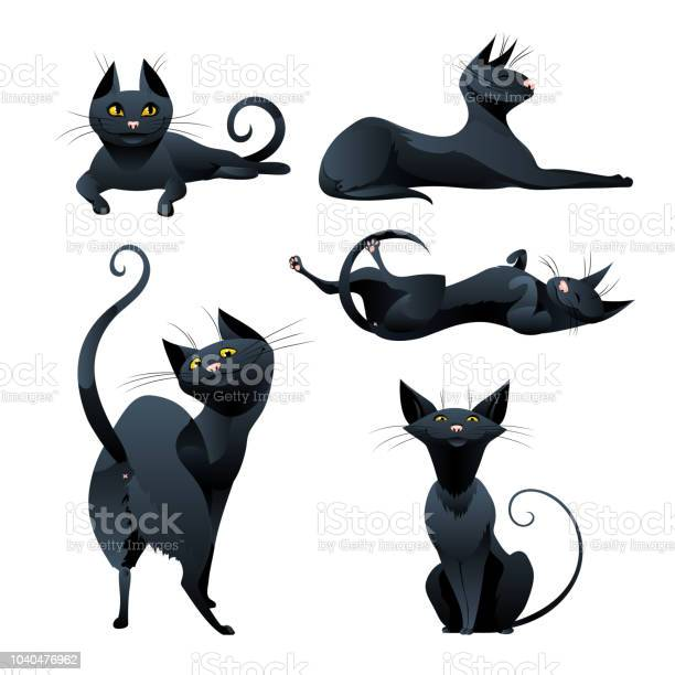 Set of black cat in various poses vector id1040476962?b=1&k=6&m=1040476962&s=612x612&h=tm8eeshphkyjuqgvovapwlyji ts5k23uvgff hproy=