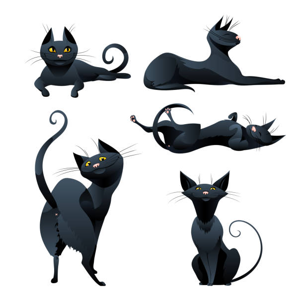 Set of black cat in various poses. Set of black cat with yellow eyes in various poses. Cute witch cat with pink nose. Vector illustration. halloween cat stock illustrations