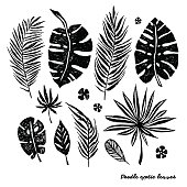 Set of black doodle exotic leaves on a white background.