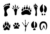 Set of black footprints of different animals