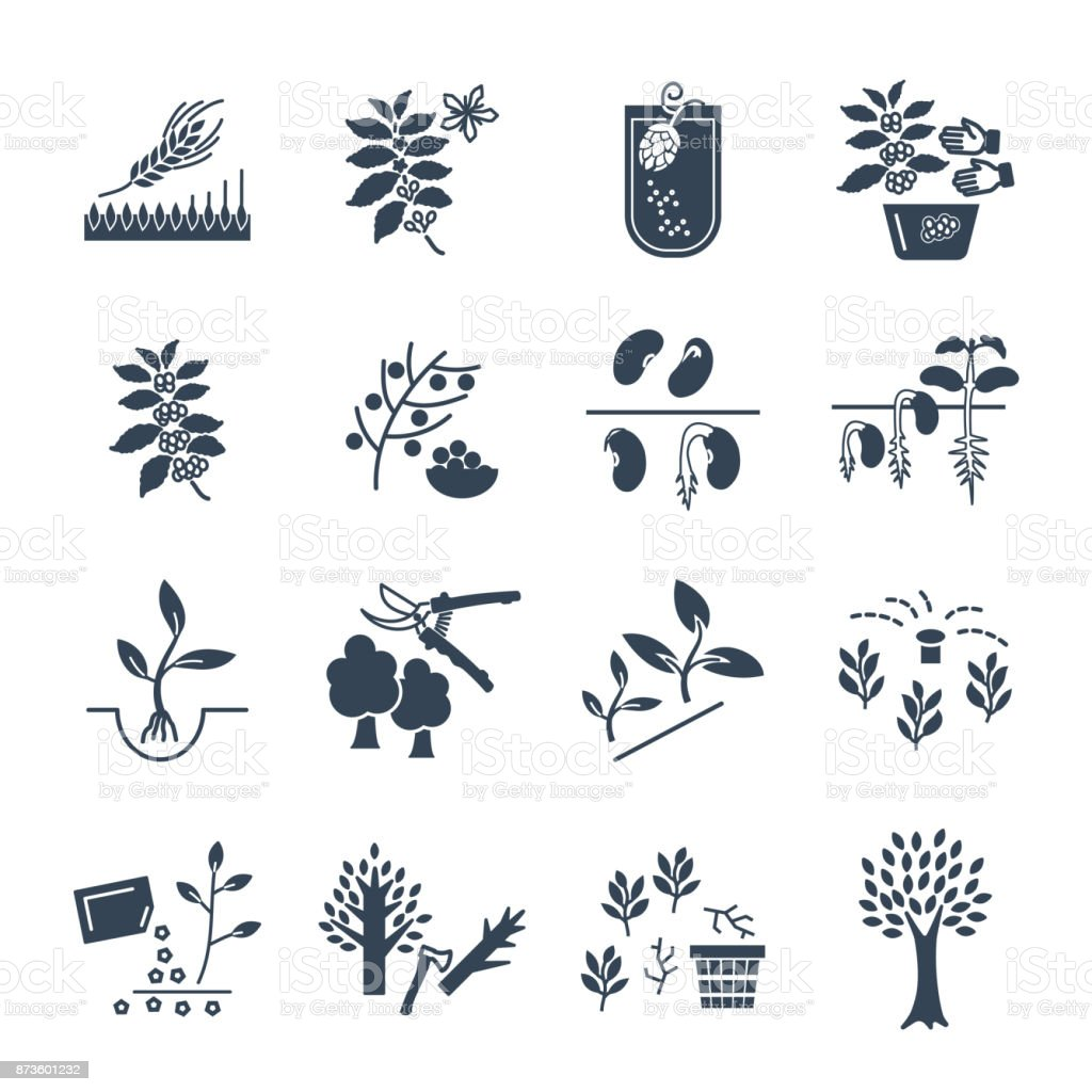 set of black icons plant, herb, grower, coffee, beans, barley vector art illustration