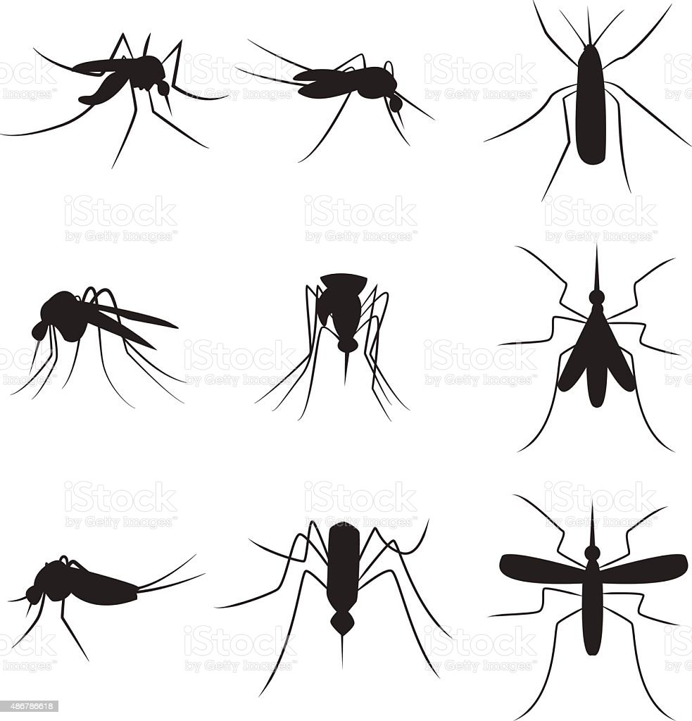 Set of black silhouette carrier mosquitoes isolated on white bac vector art illustration