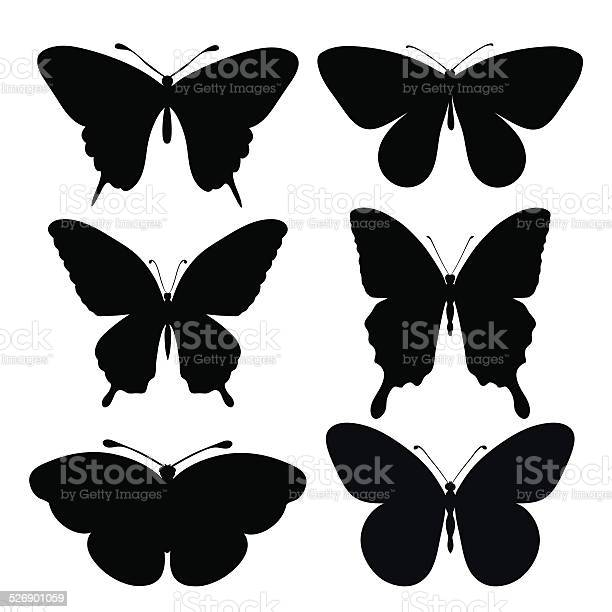 Set of black silhouettes of butterflies vector id526901059?b=1&k=6&m=526901059&s=612x612&h=lnhuduso1nim1h0wg 0htore1bjcz1idyrmmjslkcgc=