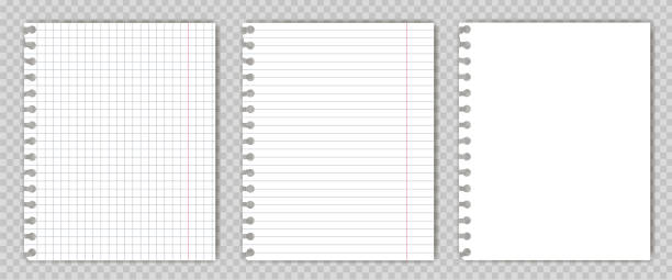 set of blank  copy book sheets with torn edges. mockup or template of graph notepad pages for your text. - composition stock illustrations