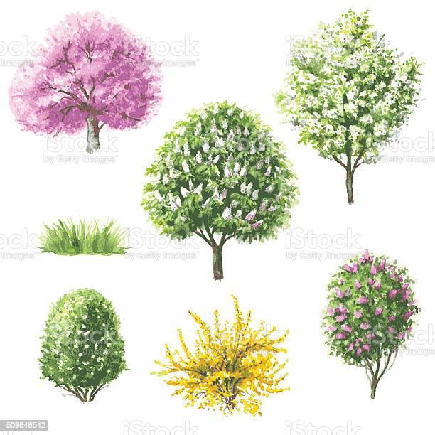 Set of blooming trees and bushes vector id509848542?b=1&k=6&m=509848542&s=612x612&h=yct4k o9uvm4 4hya6qxgnpdkkwrzlb3dpg2lgu9dgk=