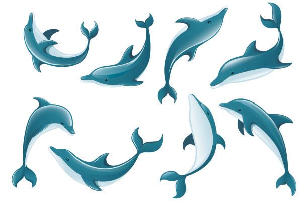 Set of blue dolphin cartoon sea animal design flat vector illustration isolated on white background Set of blue dolphin cartoon sea animal design flat vector illustration isolated on white background. dolphin stock illustrations