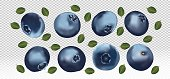 Set of blueberry with leaves on transparent background. Fresh blueberry fruits are whole. Useful ripe fresh blueberry rich in vitamins, natural product. Realistic vector illustration.