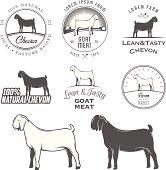 Set of boer goat labels, badges and design elements