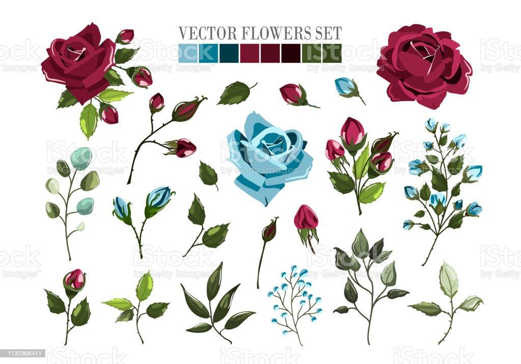 Set of bordo burgundy and navy blue rose flowers and green leaves векторная иллюстрация
