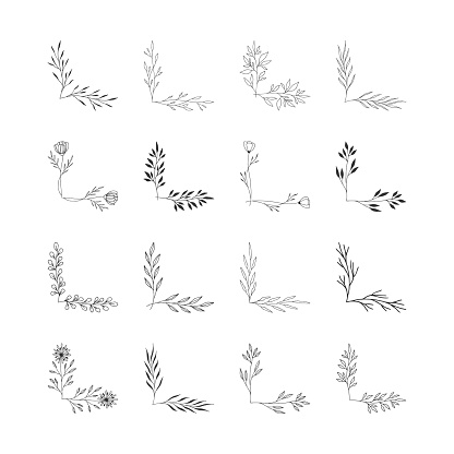 Set of botanical hand drawn decorative corners with nature design elements. Floral ornament.