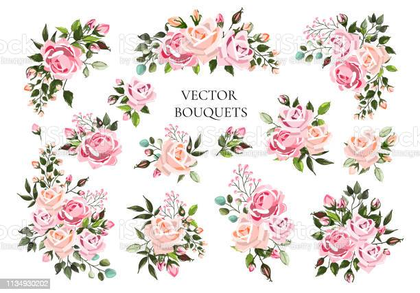 Set of bouquets pale pink and peachy flower roses with green leaves vector id1134930202?b=1&k=6&m=1134930202&s=612x612&h=b rroy fjdbfl3k552ducmz3knzqhdm4tp2ymsbmuxe=