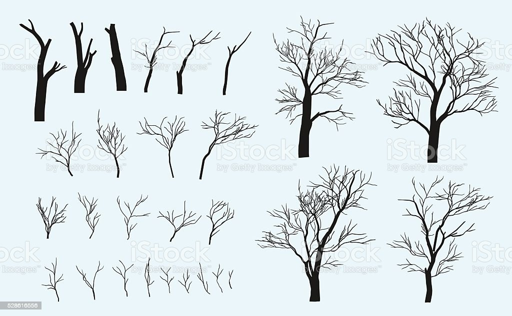 Set of branches. Trees are formed from these branches. vector art illustration