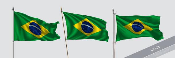 bildbanksillustrationer, clip art samt tecknat material och ikoner med uppsättning brasilien viftande flagga på isolerade bakgrund vektor illustration - brasilien flagga