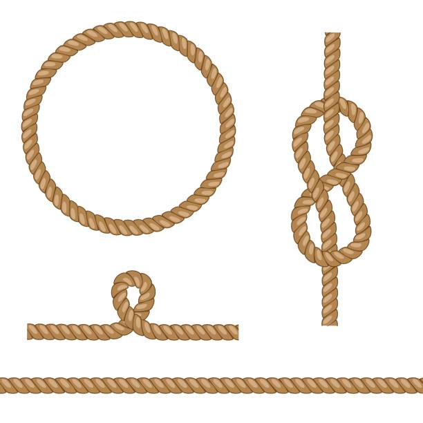 Set of brown vector ropes with different knots. Set of brown vector ropes with different knots. naval base stock illustrations