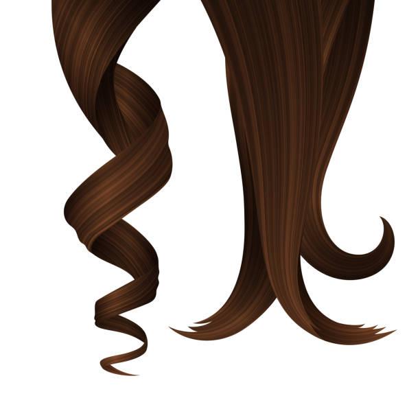 stockillustraties, clipart, cartoons en iconen met set van brunette golvende strengen van haar. vector realistische 3d illustratie. design element voor kappers - curly brown hair