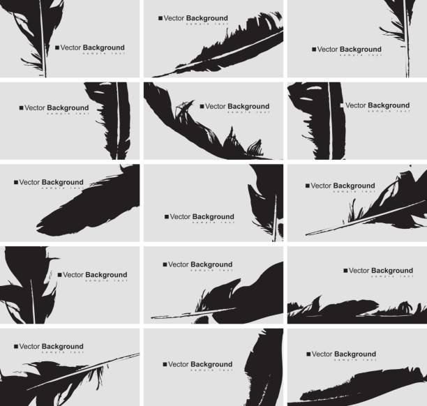 set of business cards with a bird feather - stalówka stock illustrations