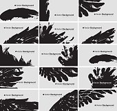 vector set of black and white business cards with a bird feather and wing