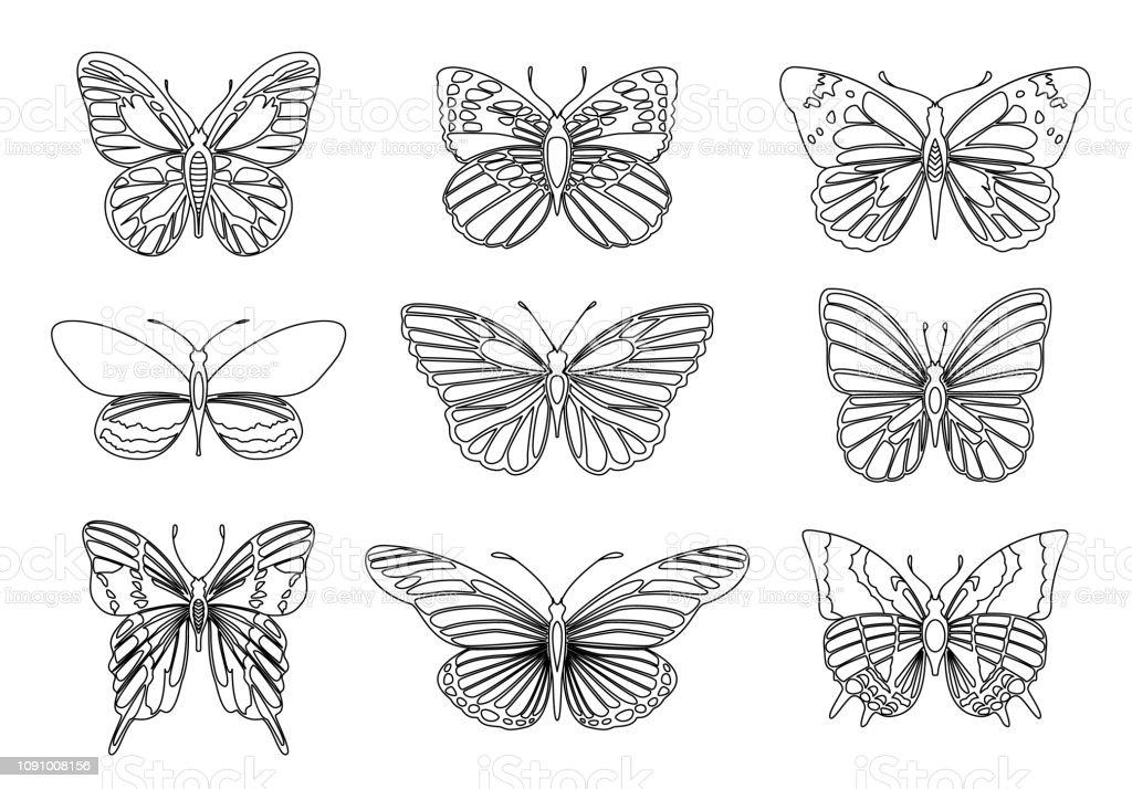 Volwassen Kleurplaten Vlinders.Verzameling Van Vlinders Voor Ontwerpelement En Volwassen Of