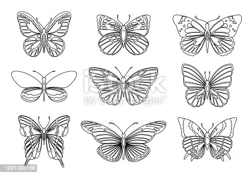 Set of butterflies for design element and adult or kids coloring book page. Vector illustration