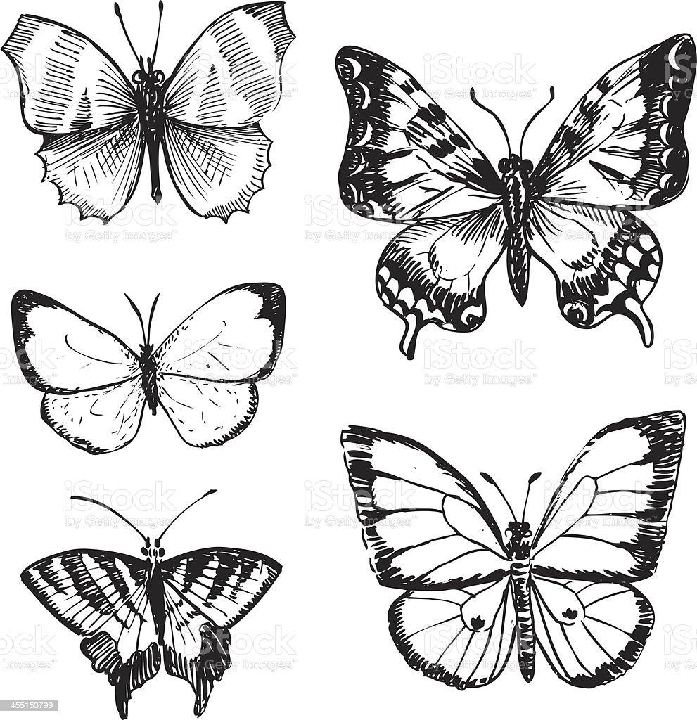 Set Di Farfalle Immagini Vettoriali Stock E Altre Immagini Di Ala