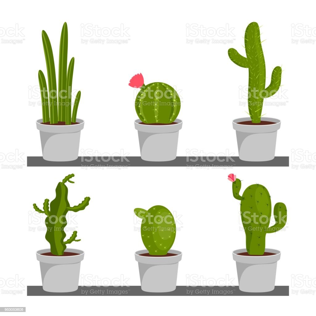 Set Of Cactus Houseplants In Flower Pots Cactus Icons In A Flat