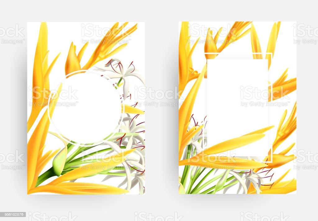 strelizia と白い花のカード テンプレートのセット 3dのベクターアート