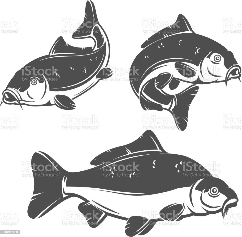 Set of carp fish icons isolated on white background. vector art illustration