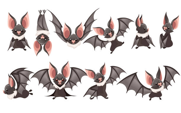 set of cartoon bat. cute vampire bat, flying mammal. flat vector illustration isolated on white background. cartoon character design. bat flapping wing, waving hand - bat stock illustrations