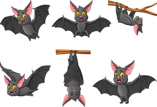 Set of cartoon bat with different expressions