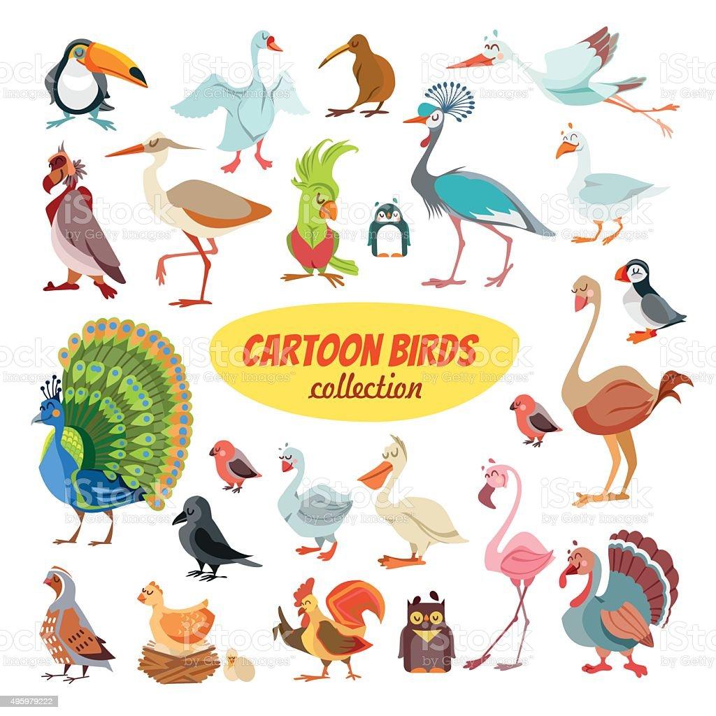 Set of cartoon birds vector art illustration