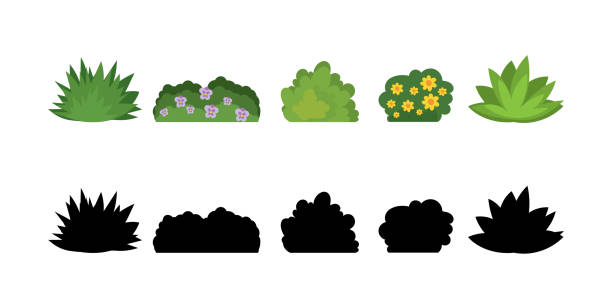 Set of cartoon bushes in flat style. Collection green plants and black silhouettes, isolated on white background. Set of cartoon bushes in flat style. Collection green plants and black silhouettes, isolated on white background. Elements of natural flora. Different type of shrubs with flowers. Vector illustration bush stock illustrations