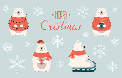 Set of cartoon Christmas polar bear characters with gift, garland, hot chocolate and sleigh. Vector isolated funny happy new year illustration for xmas cards, banners and labels.