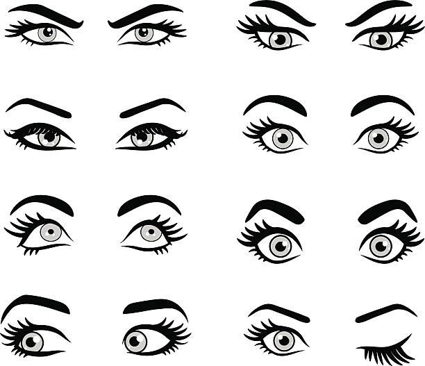 Royalty Free Eyebrows Woman Clip Art Vector Images Illustrations