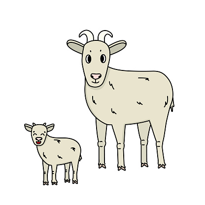Set of cartoon farm goat with horns and a kid stand sideways and look straight. Isolated Animals are on white background