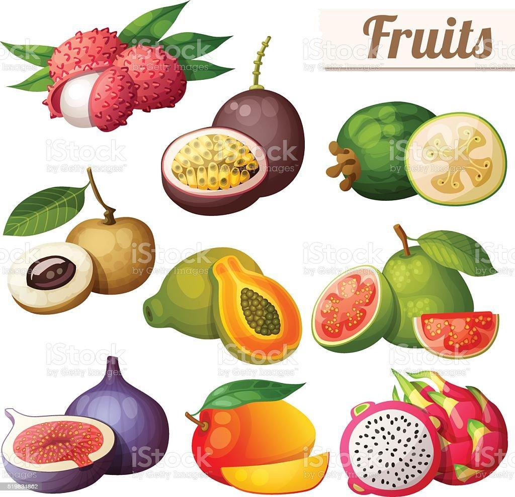 Conjunto de iconos de dibujos animados de los alimentos frutas ex ticas aislado sobre blanco - Frutas tropicales y exoticas ...