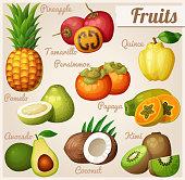 Set of cartoon food icons. Exotic fruits. Pineapple (ananas), tamarillo quince, persimmon, papaya (pawpaw) pomelo, avocado, coconut kiwi