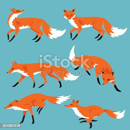 Set Of Cartoon Foxes On Blue Background