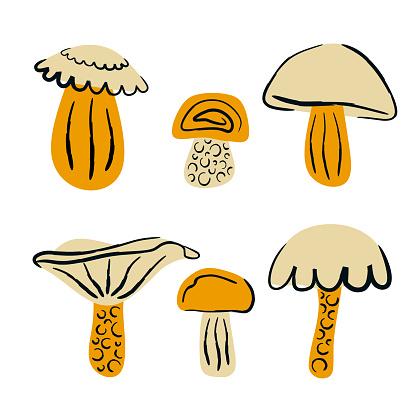 Set of cartoon mushrooms vector illustration
