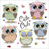 Set of  cartoon owls on a white background