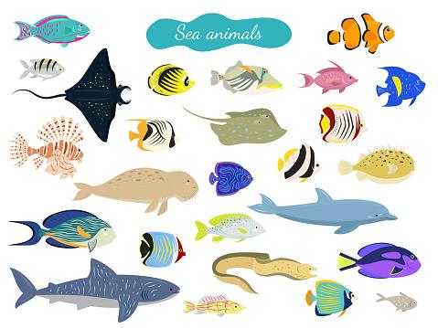 Set of cartoon sea animals on white background.