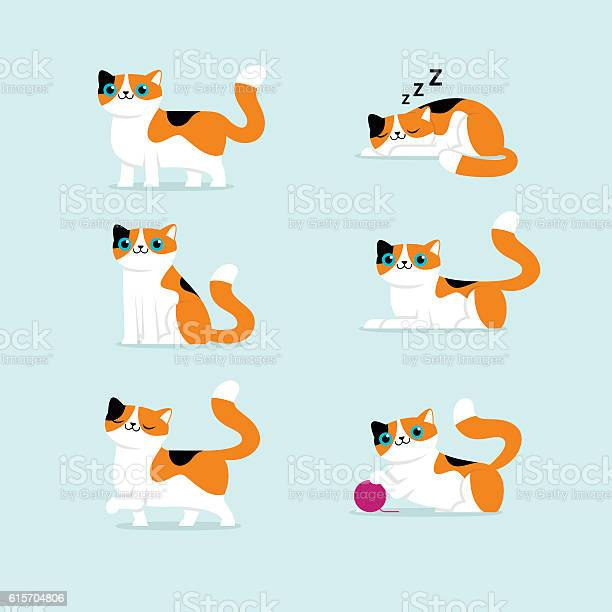 Set of cat poses vector illustration vector id615704806?b=1&k=6&m=615704806&s=612x612&h=dxevj53ydmrshe9jezqhud1ygkffqkii3njrql9kqly=