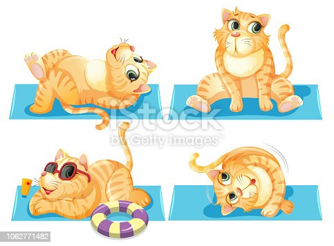Set of cat relaxing illustration