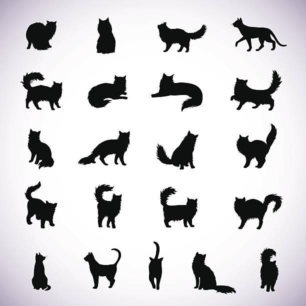 の猫のシルエット - 子猫点のイラスト素材/クリップアート素材/マンガ素材/アイコン素材