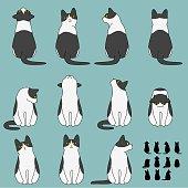 Set of cat sitting poses.
