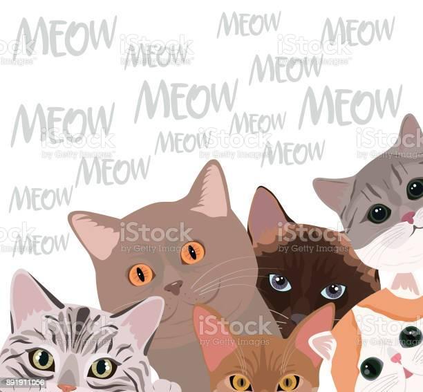 Set of cats of different breeds vector id891911056?b=1&k=6&m=891911056&s=612x612&h=qj0zj3bgswukz1h2koyvgeyouolelhwxvejqukoqy2o=
