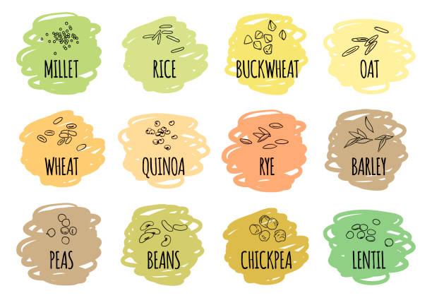 ilustrações de stock, clip art, desenhos animados e ícones de set of cereals, grains and legumes - quinoa
